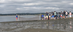 Lower School Hits the Beach for Family Science Saturday